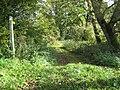 Footpath towards Old Springs Farm - geograph.org.uk - 574740.jpg
