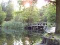 Forêt de Soignes 02.JPG
