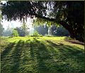 Ford Park, First Light, Redlands, CA 8-12 (7796889868).jpg