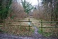 Forestry Commission permissive path, Wick Wood - geograph.org.uk - 1206515.jpg
