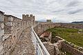 Fortaleza de Samuel, Ohrid, Macedonia, 2014-04-17, DD 40.JPG