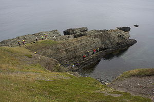 Terreneuvian - Delegates from the Ichnia 2012 conference inspect the Global Boundary Stratotype Section and Point (GSSP) for the Ediacaran-Cambrian boundary at Fortune Head Ecological Reserve, Newfoundland, Canada. The boundary is defined on the appearance of the complex, vertical trace fossil Treptichnus (formerly Phycodes) pedum.