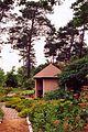 France Loiret Ingrannes Arboretum 06.jpg