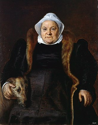 Frans Floris - Portrait of an elderly lady