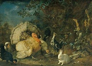 Hausgeflügel und Kaninchen