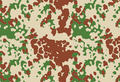 French experiment Flecktarn.png