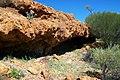 Fringed Rock Shelter.jpg