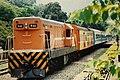 Fu-Hsing Semi-Express in Neiwan.jpg
