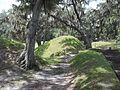GA Richmond Hill Fort McAllister inside07.jpg