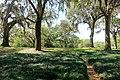 Garden view - Bok Tower Gardens - DSC02309.jpg