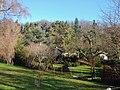 Gartensiedlung bei Warmbronn - panoramio.jpg