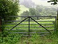 Gate with Upper Dovey Valley behind - geograph.org.uk - 506246.jpg