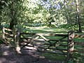 Gateway from Frame Heath Inclosure to Frame Wood, New Forest - geograph.org.uk - 44651.jpg