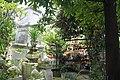 Giac Lam Pagoda (10017868404).jpg