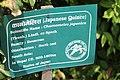 Godawari Botanical Garden (132).jpg