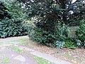 Grab Pascual Jordan FriedhofOhlsdorf (1).jpg