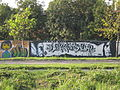 Graffiti in pancevo-9.jpg