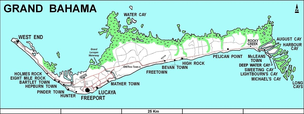 Grand Bahama Island Snorkeling Off The Beach