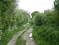 Green Lane - geograph.org.uk - 795076.jpg