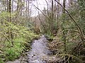 Grizedale Beck - geograph.org.uk - 159516.jpg