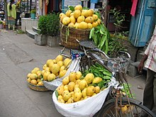 Mangoes for sale loaded on a bicycle in Guntur ae05481c3