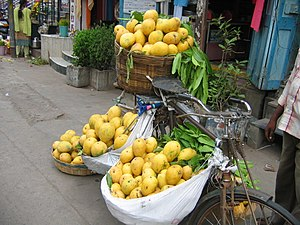 Utility cycling - Mangoes for sale loaded on a bicycle in Guntur, India