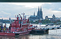 Höhenrettungsübung der Feuerwehr Köln an der Seilbahn-6132.jpg