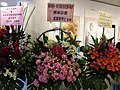 HKCL 銅鑼灣 CWB 香港中央圖書館 Exhibition flowers sign December 2018 SSG 04.jpg