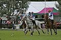 Ham Polo Club action, Billy Walsh Final 2011.jpg
