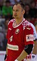Handball-WM-Qualifikation AUT-BLR 046.jpg
