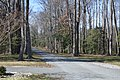 Hardens driveway.jpg
