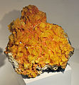 Harvard Museum of Natural History. Wulfenite. San Francisco Mine, Magdalena district, Sonora, Mexico (DerHexer) 2012-07-20 1.jpg
