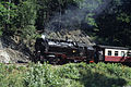 Harz steam 1991 59.jpg