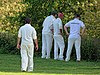 Hatfield Heath CC v. Netteswell CC on Hatfield Heath village green, Essex, England 14.jpg