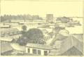 Haurigot - Excursion aux Antilles françaises, 1890 - Illustration p183.png