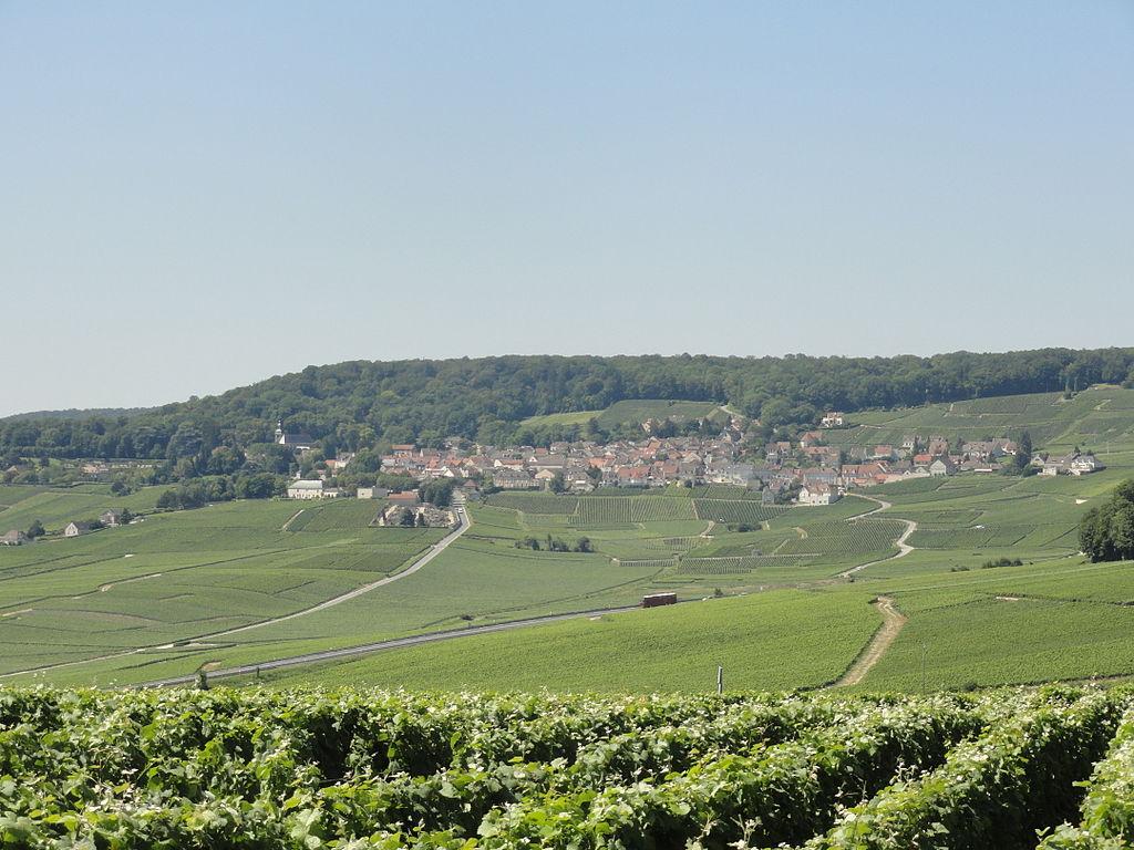 シャンパーニュの丘陵、メゾンとカーヴの画像 p1_2