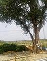 Hebburu, Tumkuru District (2).jpg