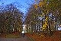 Helsingborg 2012-11-04 (8257346666).jpg