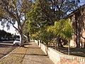 Henson St, Marrckville - panoramio (2).jpg