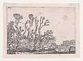 Herd of Sheep Near the Water, from Verscheyden Landtschapjes (Various Landscapes), Plate 8 MET DP871787.jpg