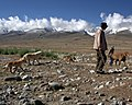 Herder on Karakoram Highway.jpg