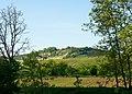 Hessigheim - Felsengärten - Ansicht von der Neckarhalde 1.jpg