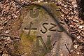 Hgr-239.jpg