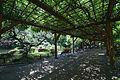 Hibiya Park02s3872.jpg