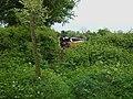 Hide and seek - geograph.org.uk - 428977.jpg