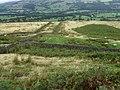 Hillside below Crawshaw Moss - geograph.org.uk - 1475933.jpg