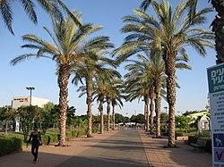 Sportek Herzliya Wikipedia Assembling a group of up to 4 players or actresses, sign up on the site according to your. sportek herzliya wikipedia