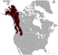 Hoary Marmot Marmota caligata distribution map.png