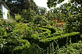 Hoeve 'De Oude Vliegh', labyrinth van buxushaagjes - 373867 - onroerenderfgoed.jpg