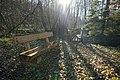 Holzbank - Erlenbruchwald.jpg